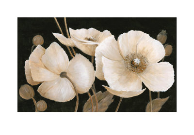 Sepia Poppies by Peter Mcgowan Pricing Limited Edition Print image