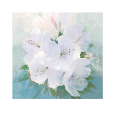 Soft White Florals by Peter Mcgowan Pricing Limited Edition Print image