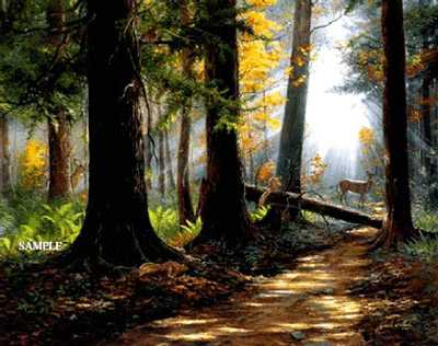 Peaceful Path by Jack Paluh Pricing Limited Edition Print image