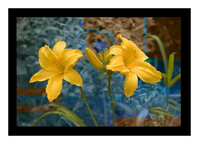 Divine Yellow by Miguel Paredes Pricing Limited Edition Print image