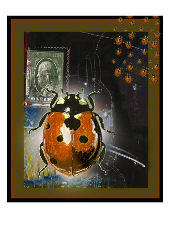 Lady Bug I by Miguel Paredes Pricing Limited Edition Print image