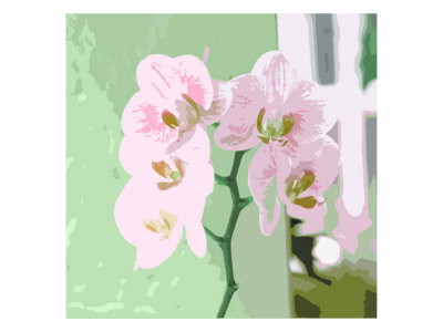 Flores Xxv by Miguel Paredes Pricing Limited Edition Print image