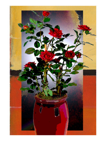 Rose In A Vase Ii by Miguel Paredes Pricing Limited Edition Print image