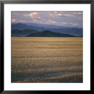View Of The Beginning Of The Altai Range From The Gobi Desert by David Pluth Pricing Limited Edition Print image