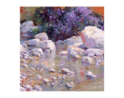 Desert Surprise by Julie Pollard Pricing Limited Edition Print image