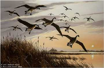 Sunset Canada Geese by Maynard Reece Pricing Limited Edition Print image