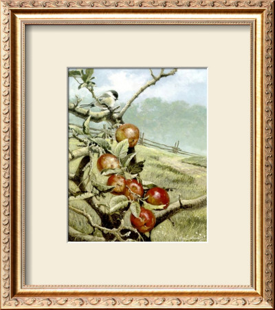 Red Orchard by Alan Sakhavarz Pricing Limited Edition Print image