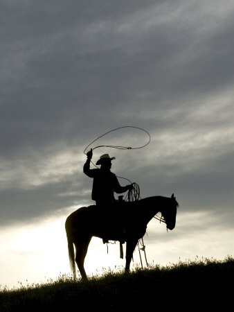 Silhouette Of Cowboy Swinging Lasso by Scott Stulberg Pricing Limited Edition Print image