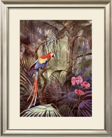 Palms And Palmettos by Ralph Taylor Pricing Limited Edition Print image