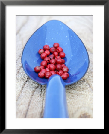 Pink Pepper In Blue Spoon by Frank Tschakert Pricing Limited Edition Print image