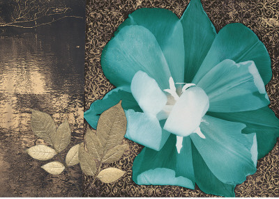 Play Of Petals by Matina Theodosiou Pricing Limited Edition Print image
