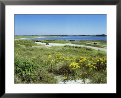 East Head, West Sussex, Uk by Ian West Pricing Limited Edition Print image