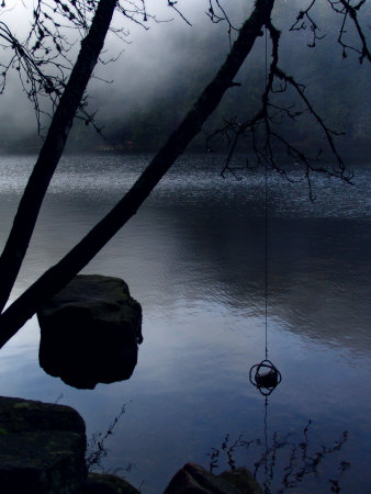 Mysterious Lake Scene by Ilona Wellmann Pricing Limited Edition Print image