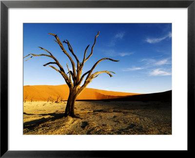 Dead Tree, Namib-Naukluft National Park, Namibia by Ariadne Van Zandbergen Pricing Limited Edition Print image