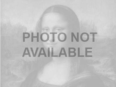 Portrait Of Isabella D'este by Telemaco Signorini Pricing Limited Edition Print image