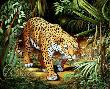 Stroll Rainforest by Doni Kendig Limited Edition Print