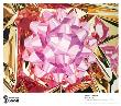 Jeff Koons Pricing Limited Edition Prints
